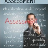 Project Health Assessment: Best Practices and Advances in Program Management Series
